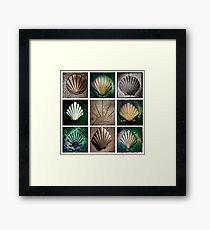 Camino Frances Pavement Markers Framed Print
