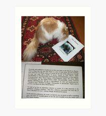 Book_and_Cat Art Print