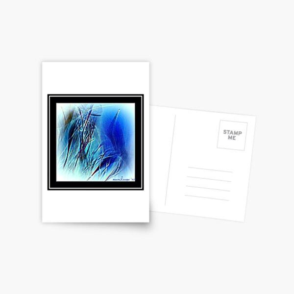 Blue Grass Postcard
