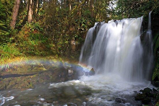 Rainbow by Majestic Falls by Daniel Brown