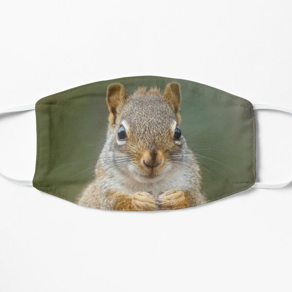 Portrait of Red Squirrel Flat Mask