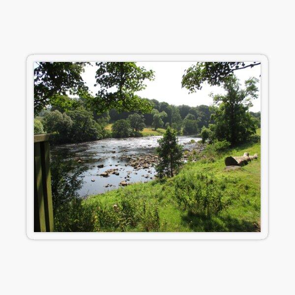 Merch #92 -- Stream Between Trees - Shot 2 (Hadrian's Wall) Transparent Sticker