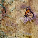 Butterfly Kisses by Pat Moore