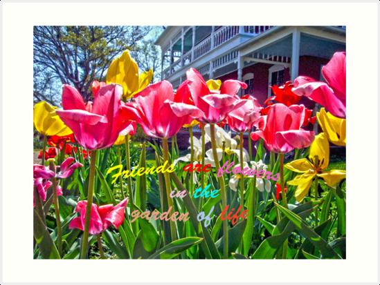 Tulip Friends by FrankieCat