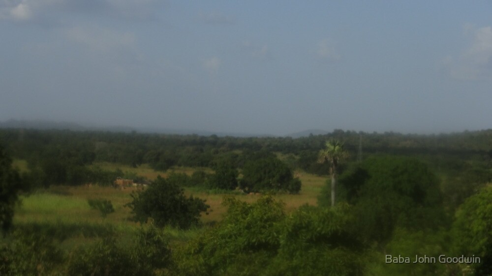 Beauty of the Northern Ghana Forest by Baba John Goodwin