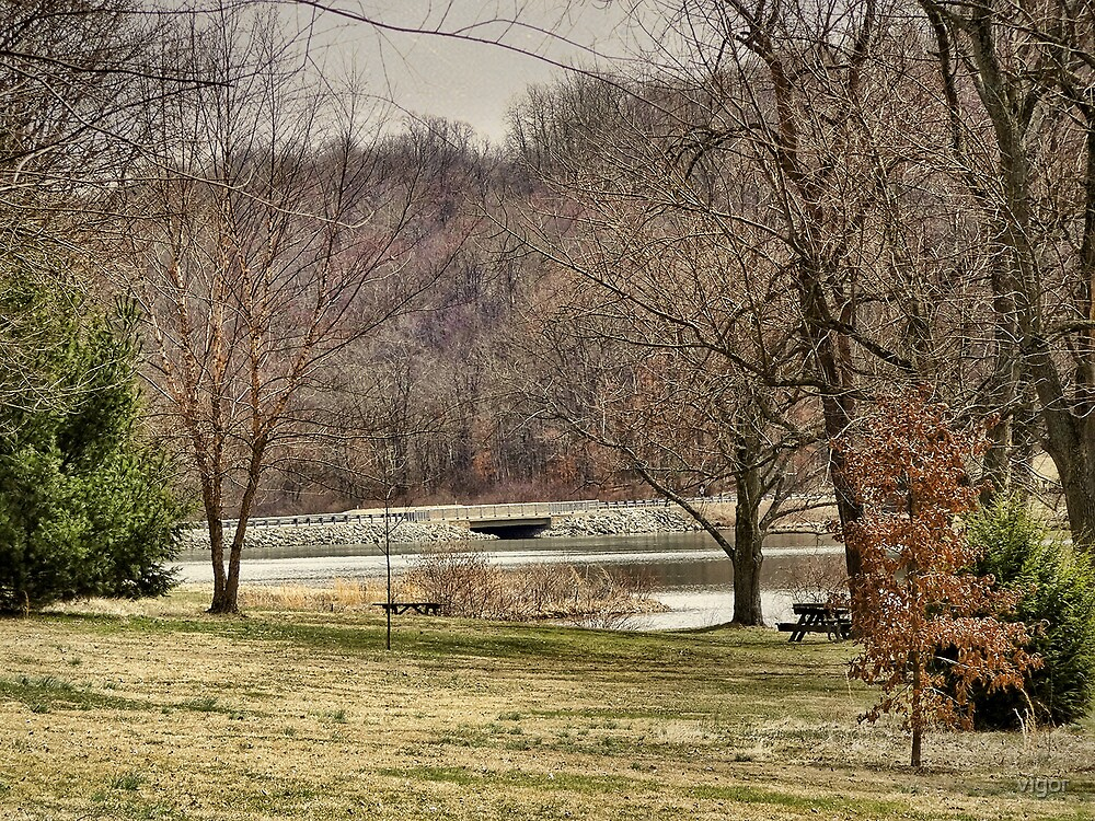 Down by the bridge by vigor