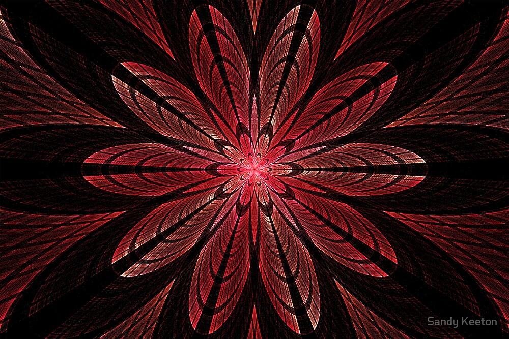 Red Flower by Sandy Keeton