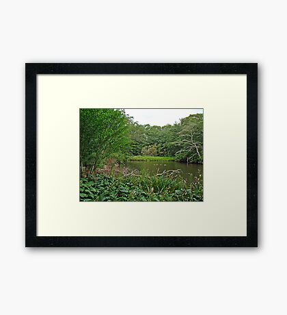 Oyster Pond From Spohr Gardens - Falmouth MA Framed Print
