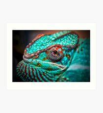 Tragan - Panther Chameleon Art Print