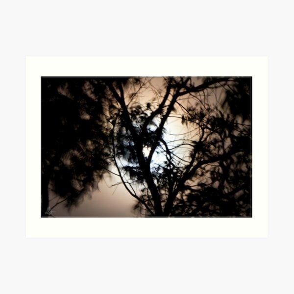Moonlight, Clouds & Wind Art Print