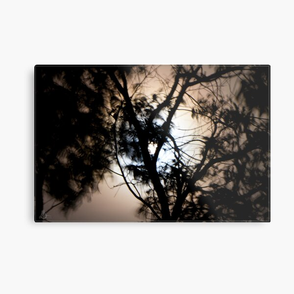 Moonlight, Clouds & Wind Metal Print