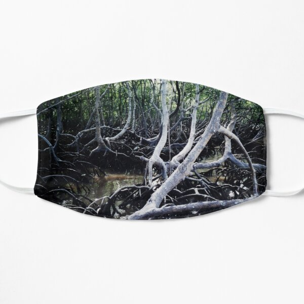 Mangroves Swamp Coastal Tropical Trees, Brasil Mask