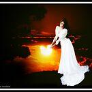 Sun Catcher by noor786