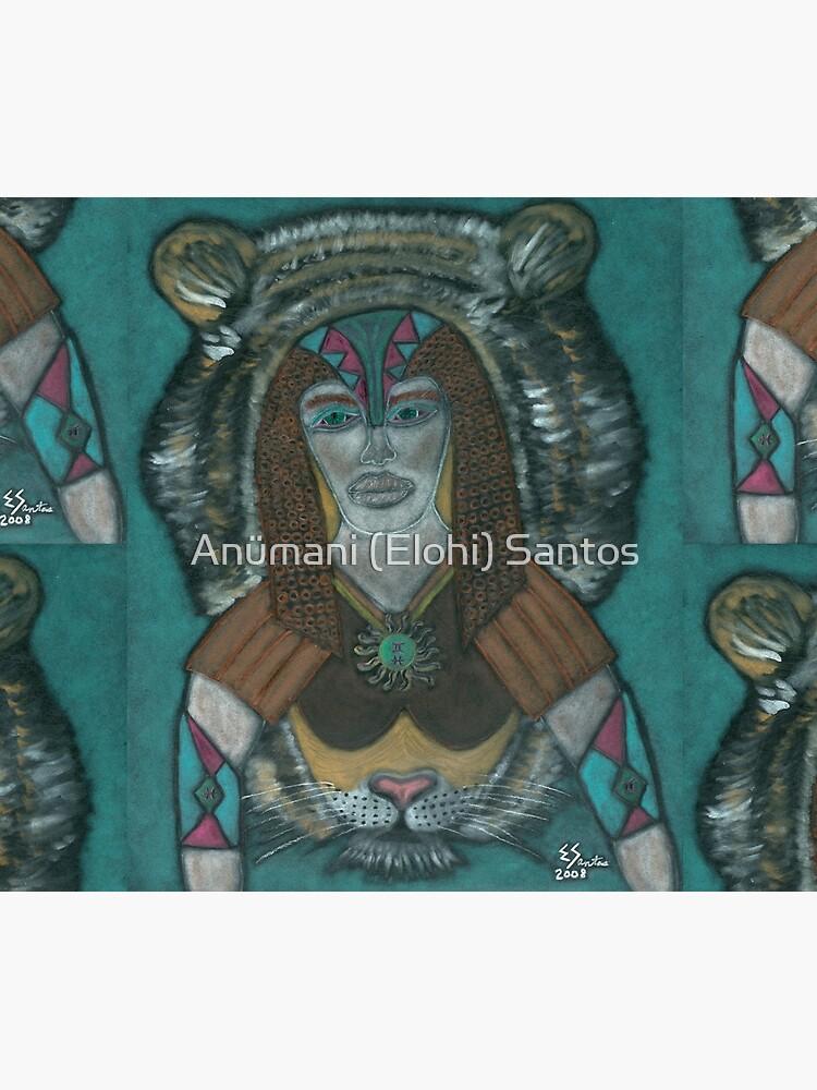 The Spiritual Warrior by anumani