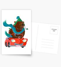 Bear in car Postcards