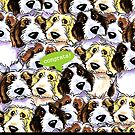 PBGV Funny Congratulations from Group Greeting by offleashart