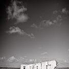 Standing in an unforgiving landscape - Flinders Ranges - South Australia by Norman Repacholi