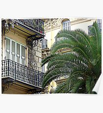 Balconies And Palms Poster