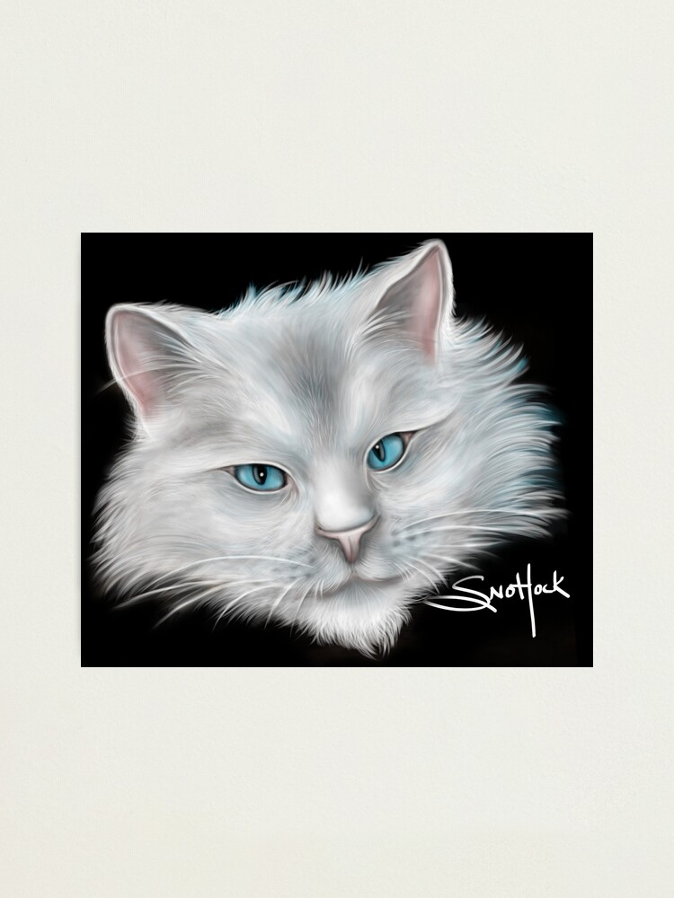 Alternate view of White Kitty Cat with Blue Eyes Photographic Print