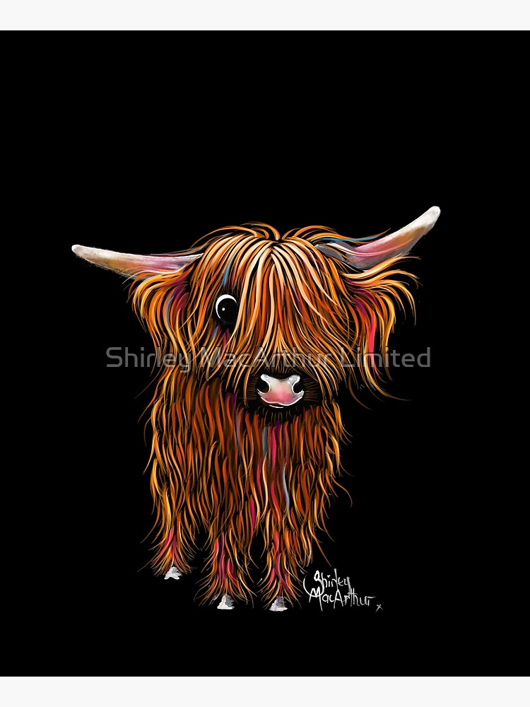 HiGHLaND CoW PRiNT SCoTTiSH ' PoRRiDGe ' BY SHiRLeY MacARTHuR by ShirleyMacA