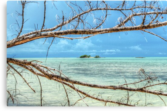 Paradise on Earth at Coral Harbour in Nassau, The Bahamas by Jeremy Lavender Photography