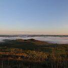 Foggy morning by brigant