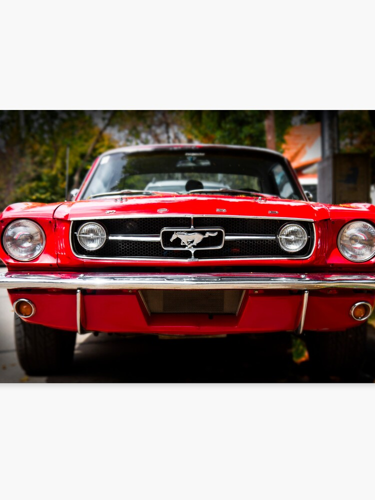 65 Ford Mustang >> Ford Mustang 65 The Red Pony Canvas Print