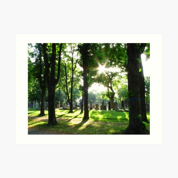 Zentralfriedhof Art Print