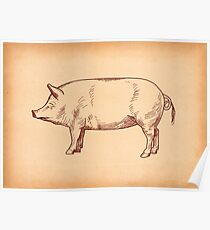 Butcher's Pig line illustration Poster