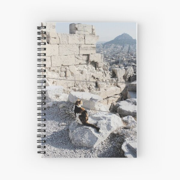 Stray cat checking out the archaeology of ancient Greece at the Acropolis Spiral Notebook