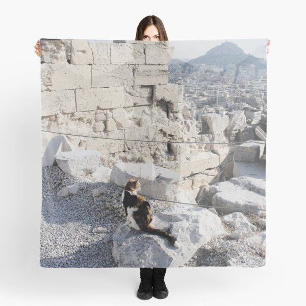 Stray cat checking out the archaeology of ancient Greece at the Acropolis Scarf