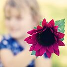 Flower Focus by Amy Dee
