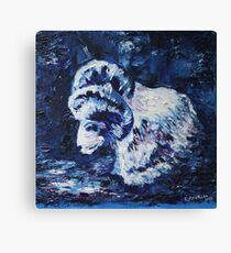 white ram on the blue background Canvas Print
