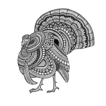 Ornate Turkey by rkrishnappa