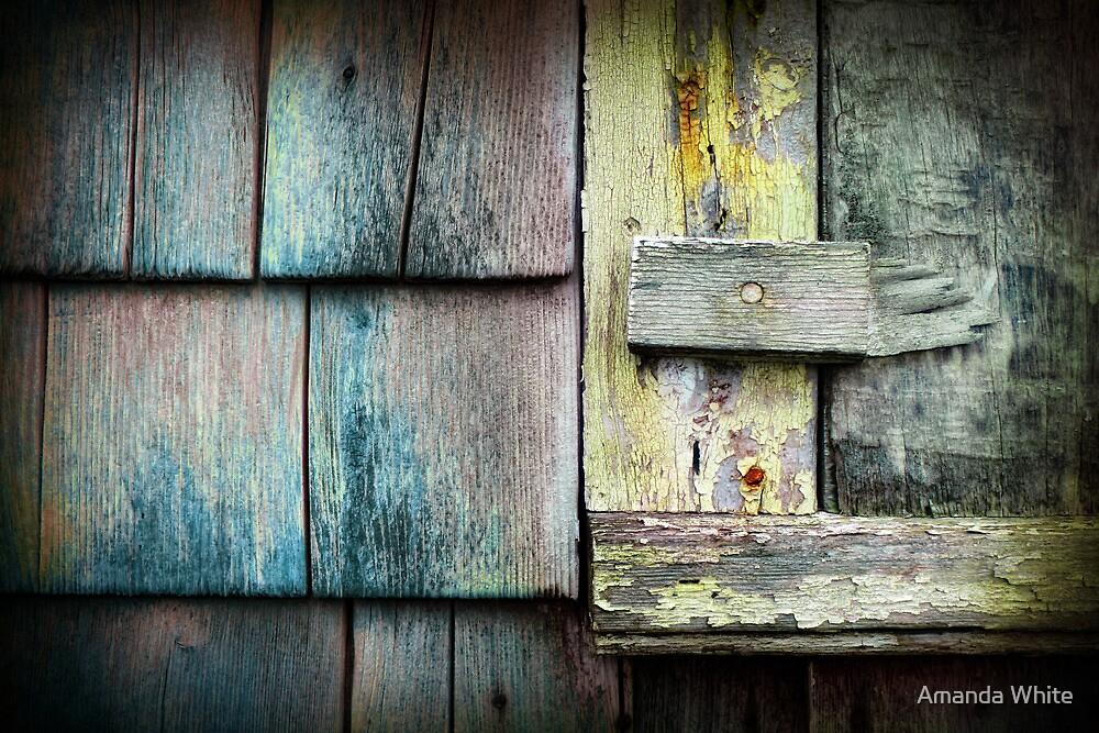 Safety Lock by Amanda White