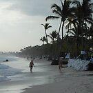 Beautiful Beach by Dragonflye2