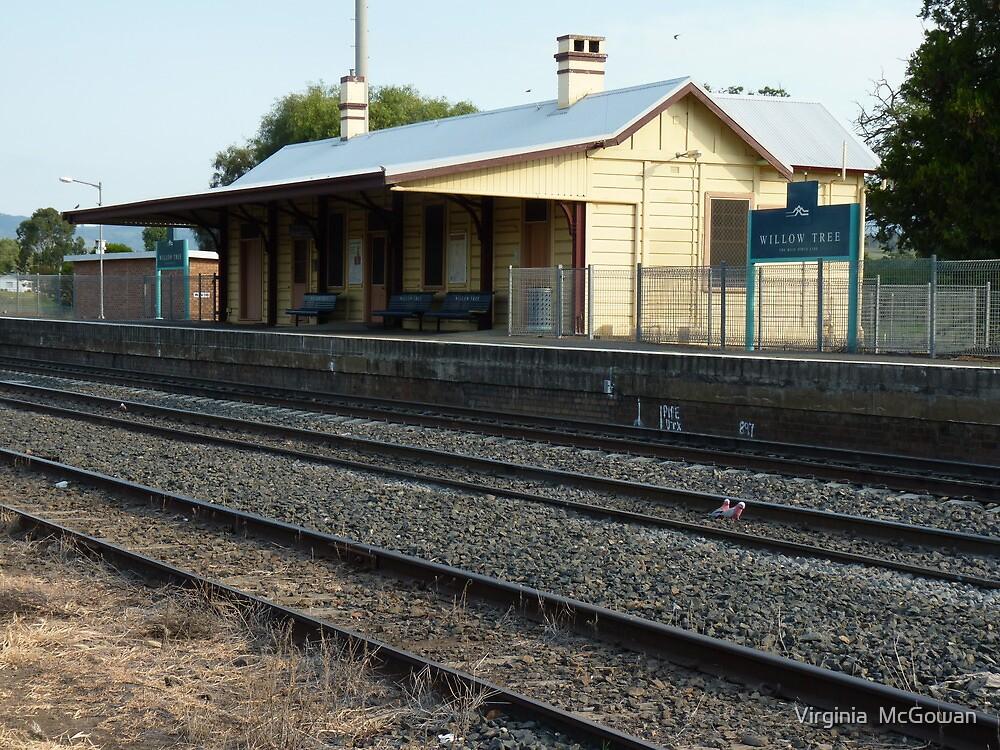 Willow Tree Rail Station  by Virginia  McGowan