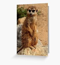 What You Saying? Greeting Card