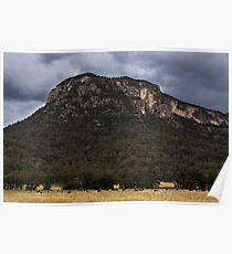 Mountains At Glen Davis Poster