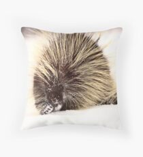 A cold porcupine in winter Throw Pillow
