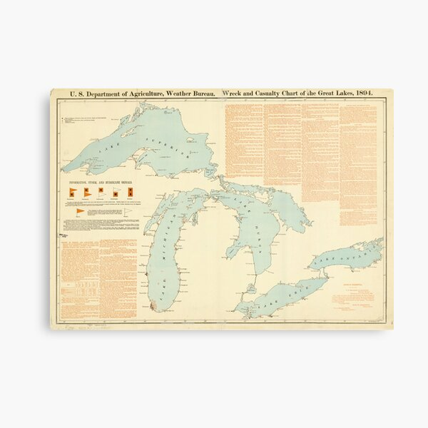I LOVE MI Michigan t-shirt heart great lakes Detroit midwest Car Rust Belt Wings