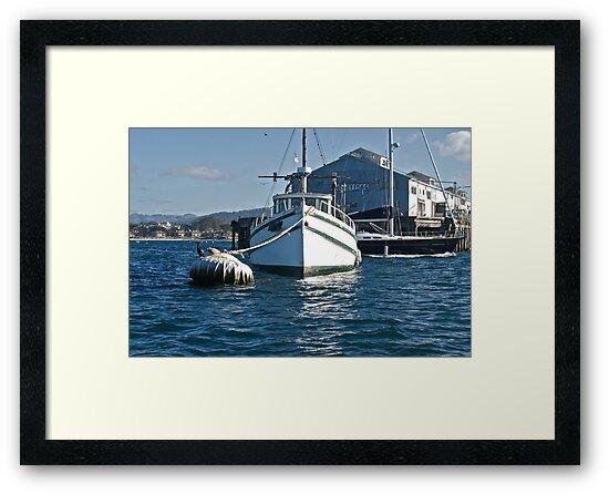 Moored at Monterey by DaveKoontz