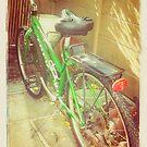 The Green Bike by Anne  McGinn
