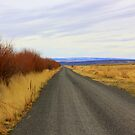 Road Less Traveled by MakenzieW1