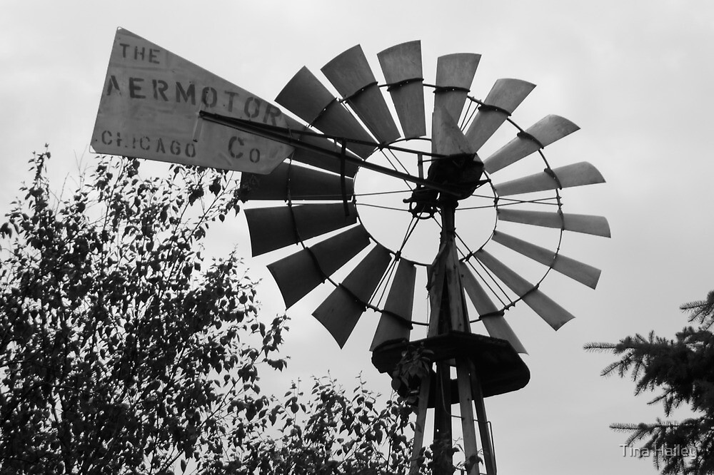 Black & White Wind Mill by Tina Hailey