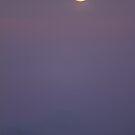 Moonrise by Will Rynearson