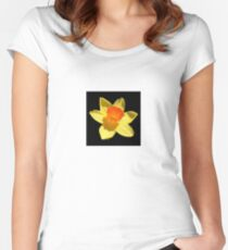 Spring Daffodil Isolated On Black Women's Fitted Scoop T-Shirt