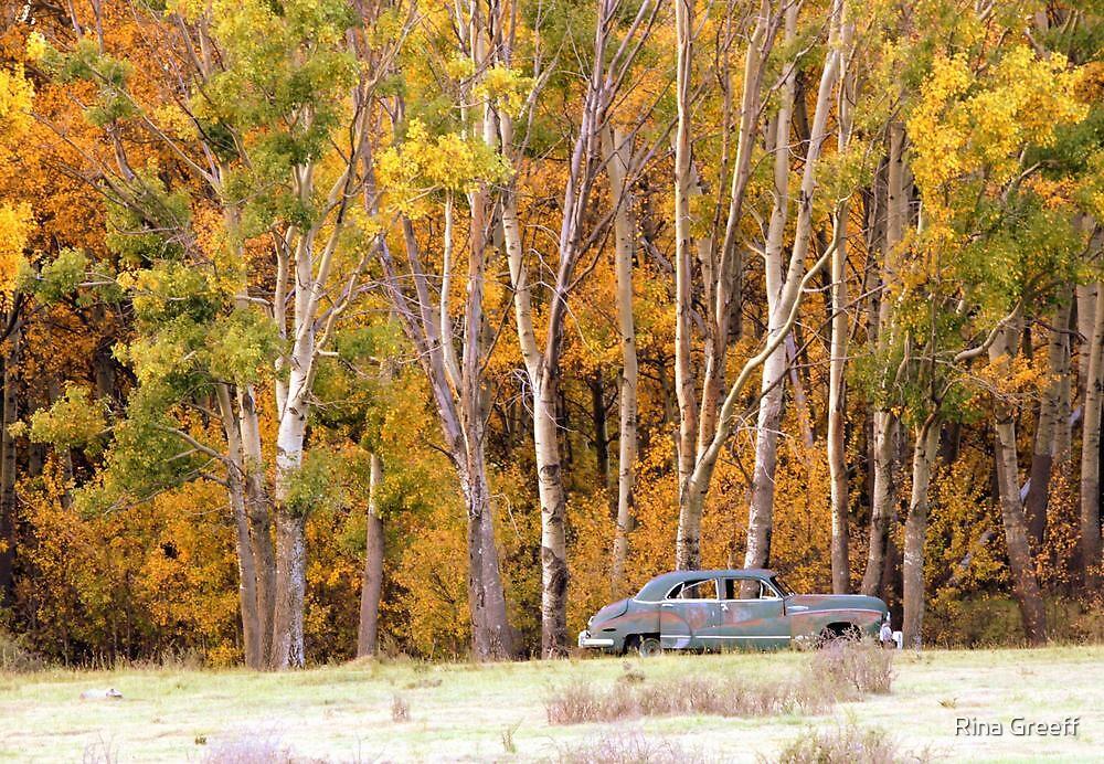 Autumn splendour  by Rina Greeff