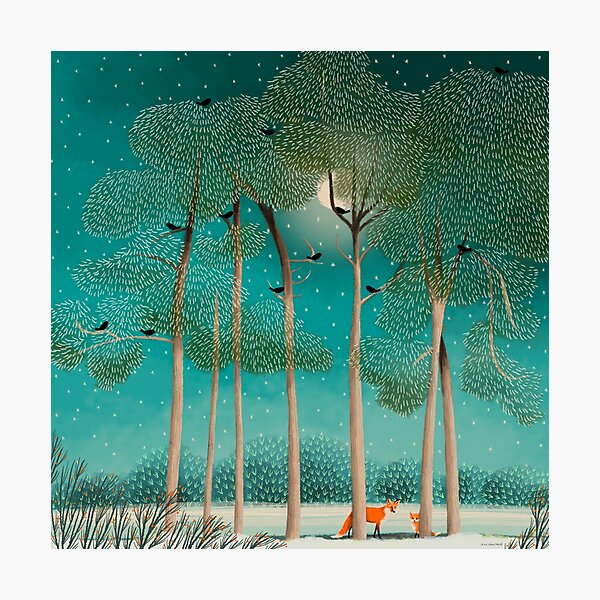 Foxes at Night Photographic Print