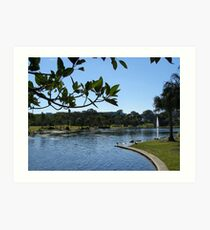 Pretty Park & Lake! Caboolture, Queensland. Art Print